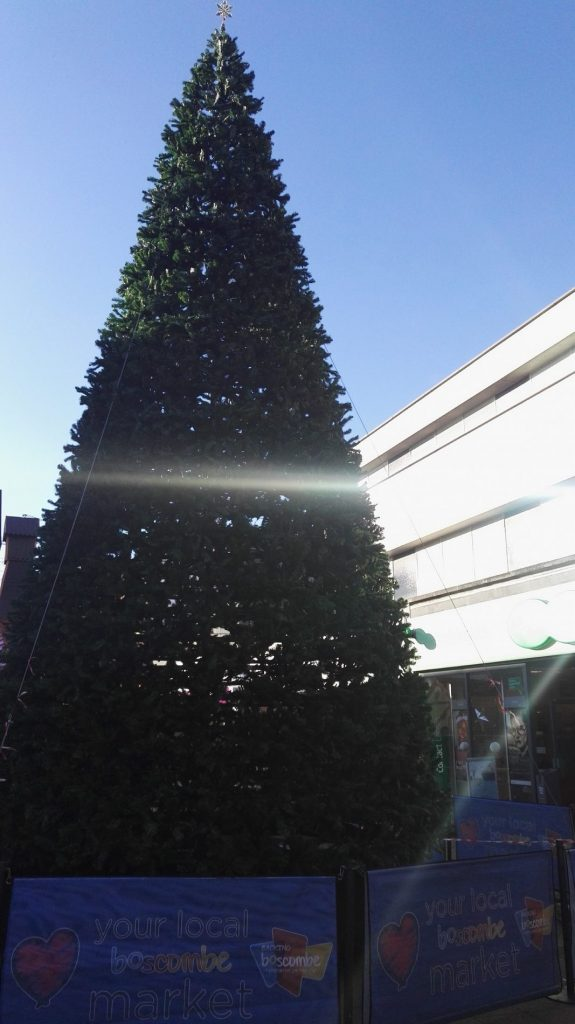 a phenomenally festive 40 ft christmas tree has arrived in boscombe in time for the holidays - Biggest Christmas Tree